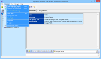 Aglowsoft SQL Query Tools screenshot 3