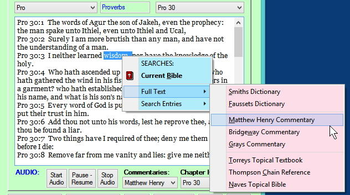 Ready Bible Study and Reference screenshot 6