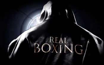 Boxing screenshot 2