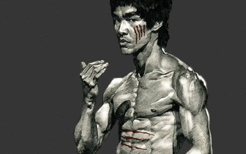 Bruce Lee screenshot 11