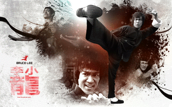 Bruce Lee screenshot 13