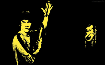 Bruce Lee screenshot 16