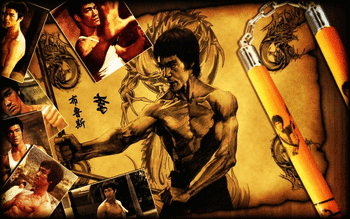 Bruce Lee screenshot 4