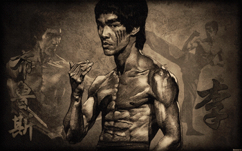 Bruce Lee screenshot 5
