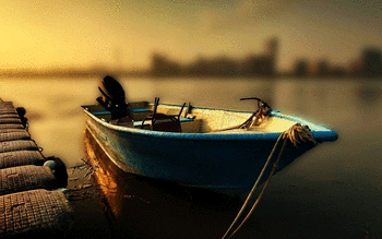 Fishing screenshot 15