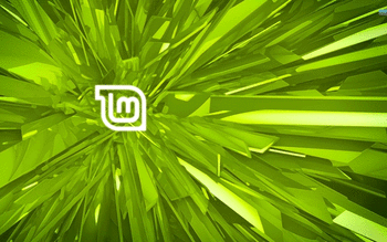 Linux Mint screenshot 13