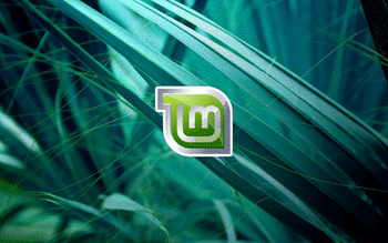 Linux Mint screenshot 19