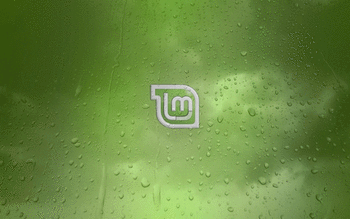 Linux Mint screenshot 20