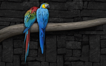 Macaw screenshot 2