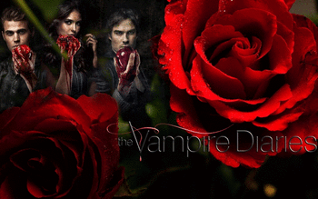 The Vampire Diaries screenshot 3