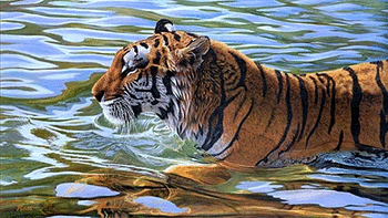Tiger screenshot 9