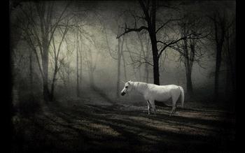 Unicorn Theme For Windows 10